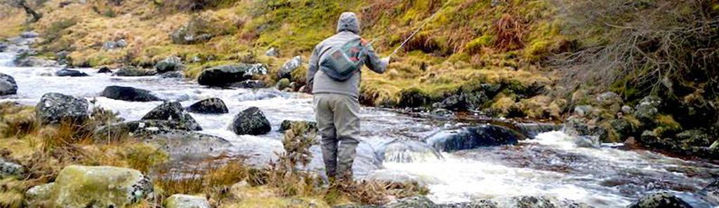 fishing small streams