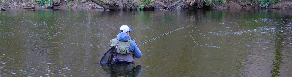 fishing slow water for grayling