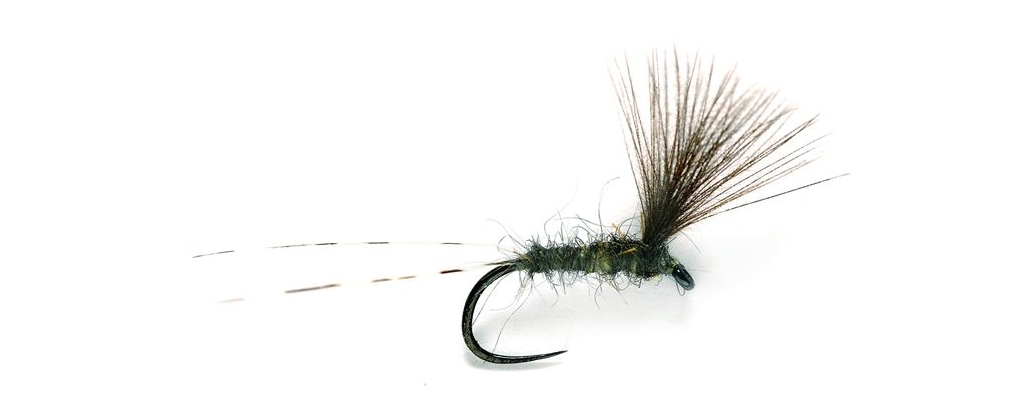 Drag free drifts. Dry fly fishing on the river San
