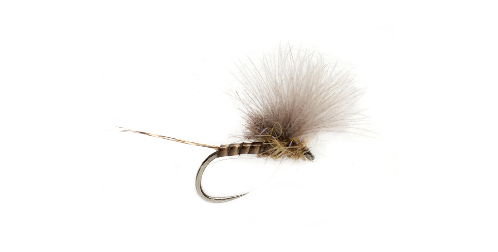 Grayling-Flies-Olive