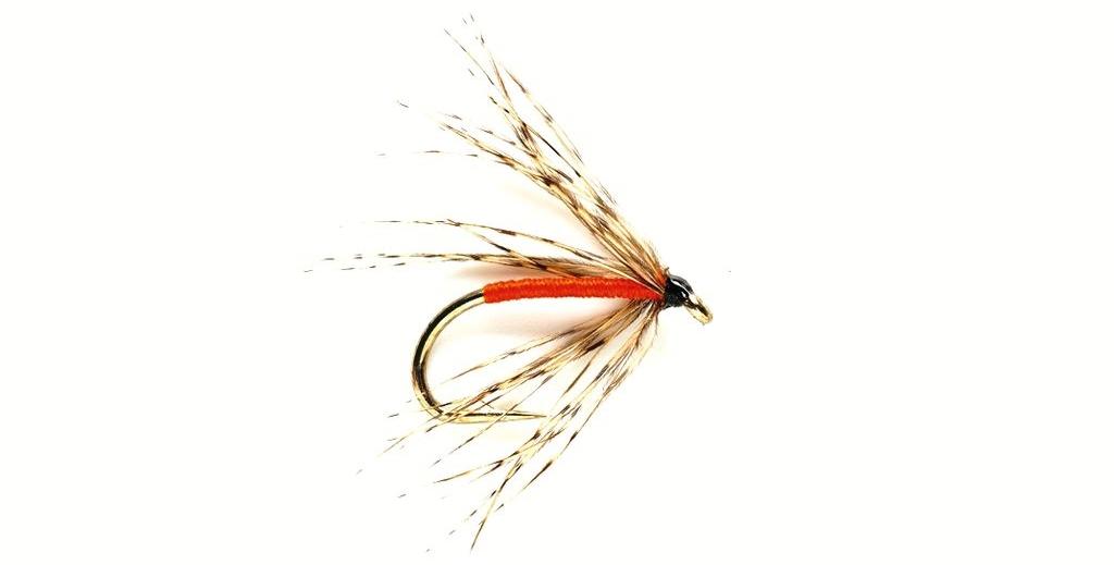 Grayling-Flies-Spider