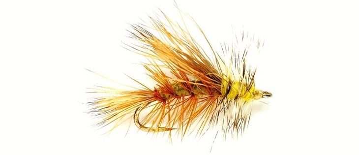 Essentail Fly Patterns for New Zealand