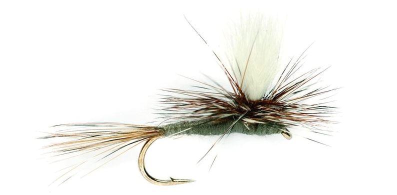 New Zealand Parachute Adams