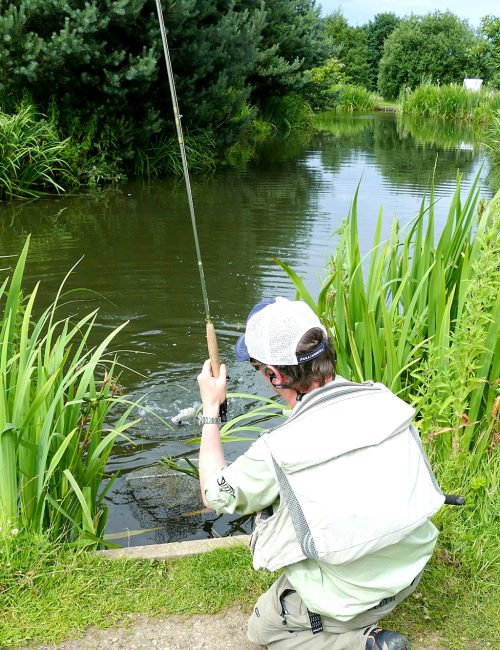 Small Water Dry Fly Fishing Tips