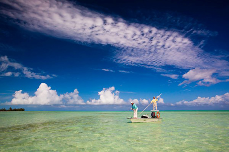 Shake, Rattle and Roll - Fly Fishing for Tarpon