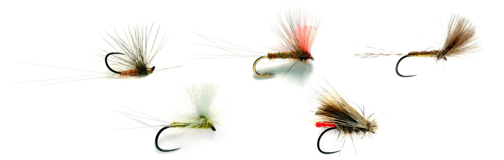 Summer Dry Fly Fishing