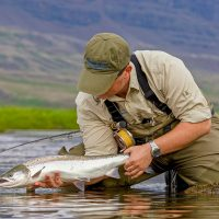 Surface fishing for atlantic salmon