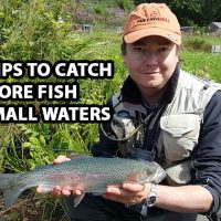 catch-more-fish-on-Small-waters