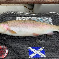 mentieth trout caught on Masterclass fluorocarbon leader