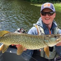 Fly Fishing For Predators|Fly Fishing For Predators|Fly Fishing For Predators|Fly Fishing For Predators|Fly Fishing For Predators|Pike FishFly Fishing For Predators|Fly Fishing For Predators|Fly Fishing For Predators